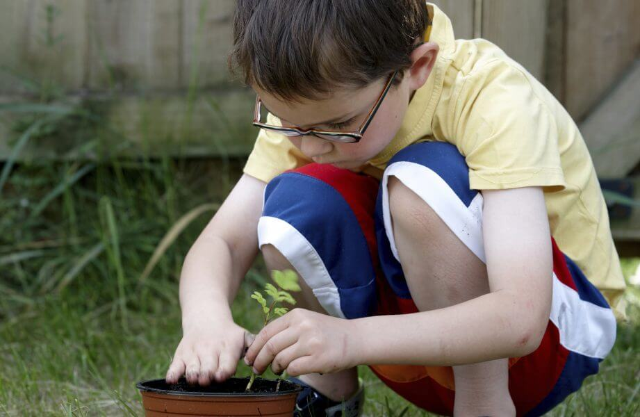 Six year old boy gardening